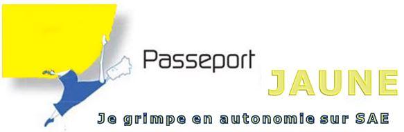 PasseportsJaune22016.jpg